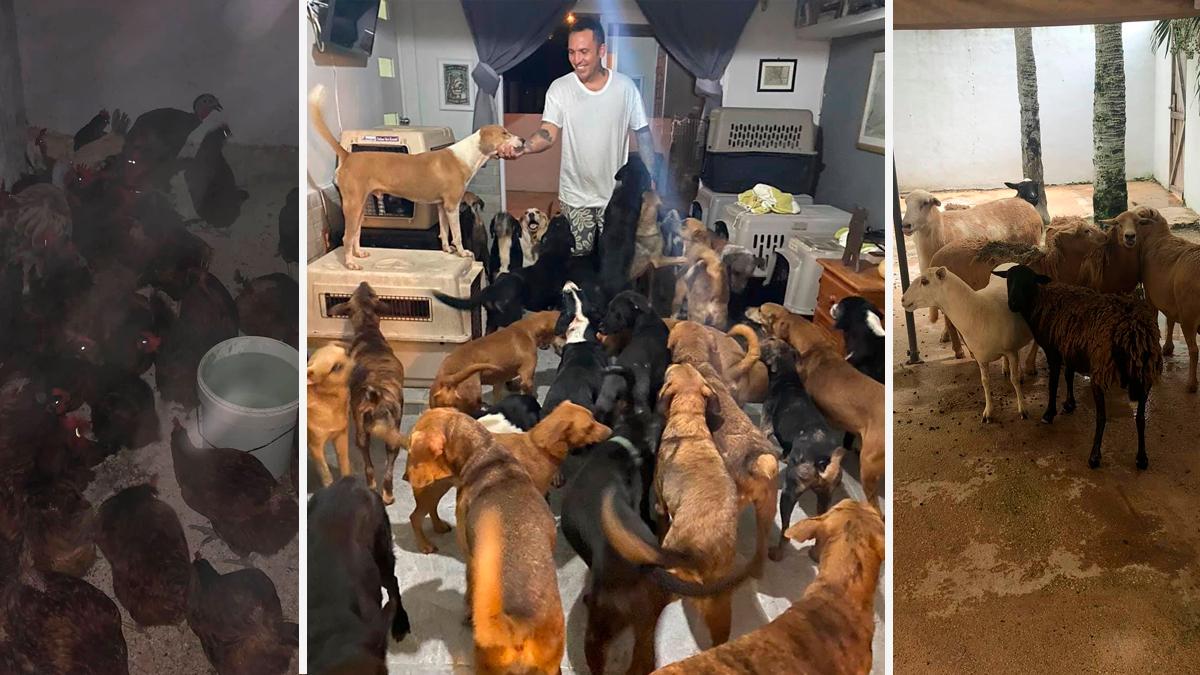 Hombre resguarda a 300 animales del huracán Delta