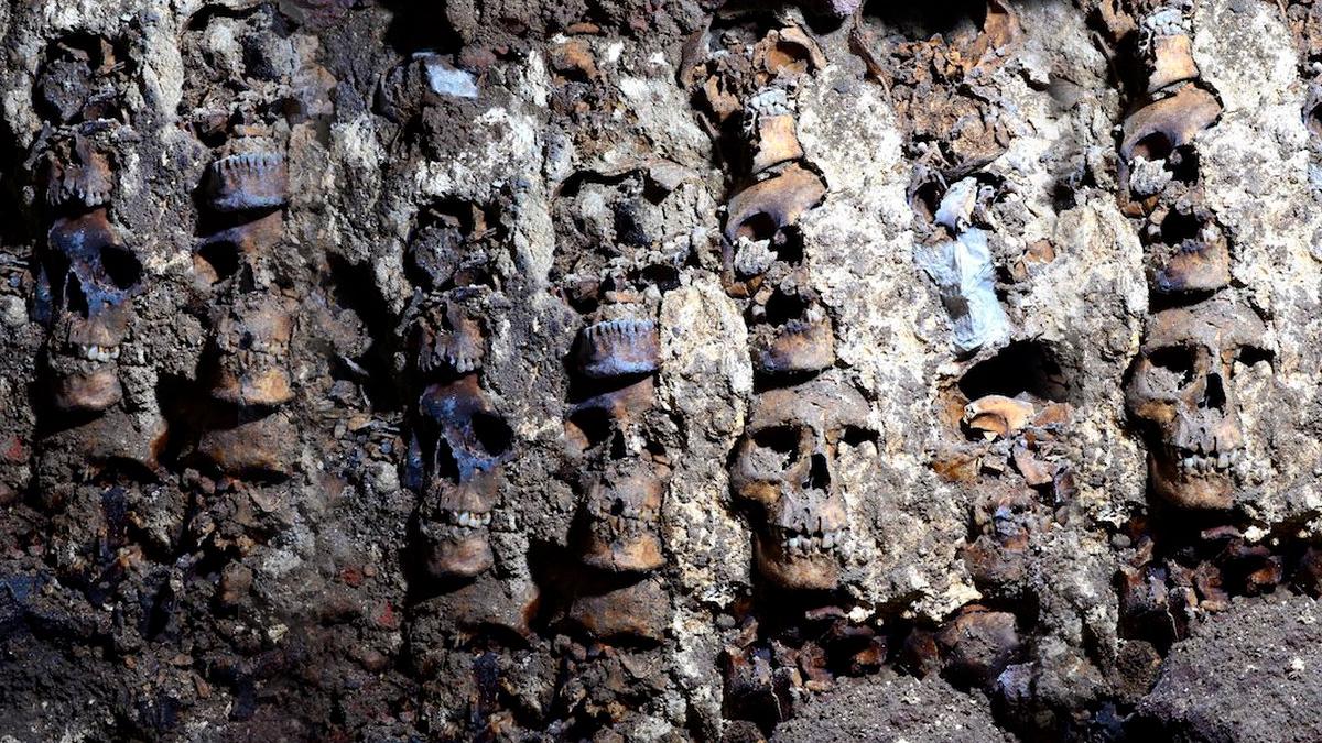 119 cráneos aztecas en el Templo Mayor, CDMX