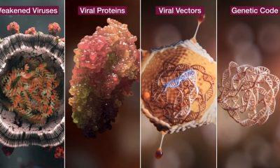 AstraZeneca muestra como funciona su vacuna contra el COVID-19
