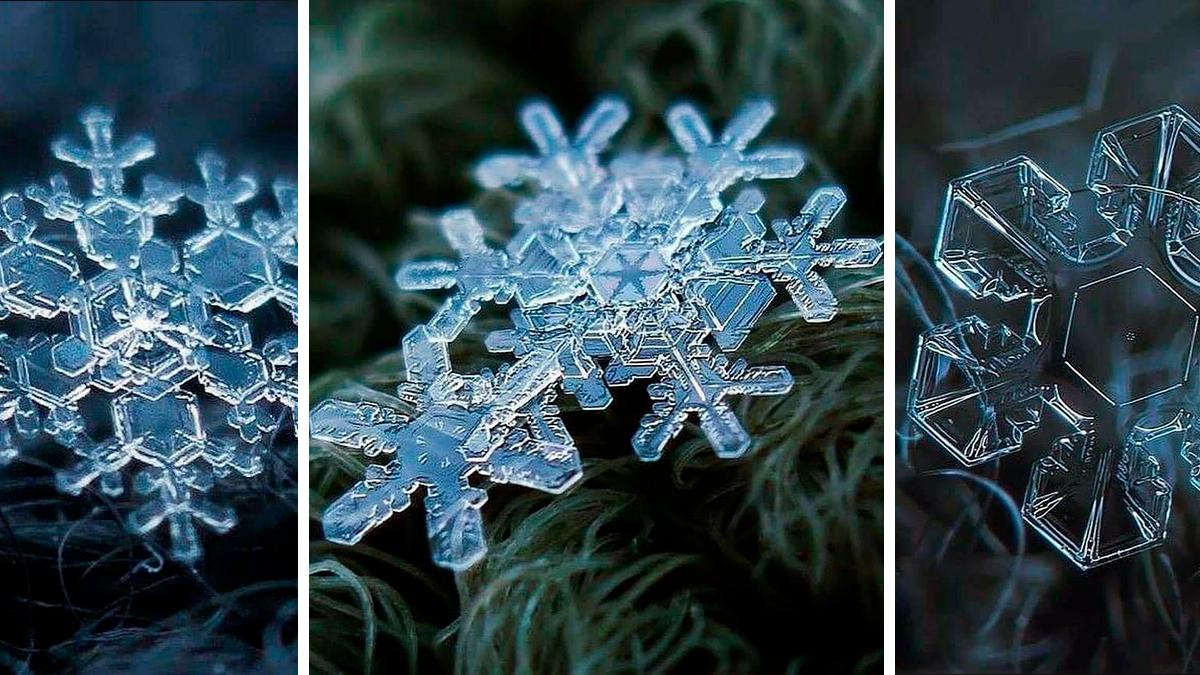 Macrofotografía de Copos de Nieve