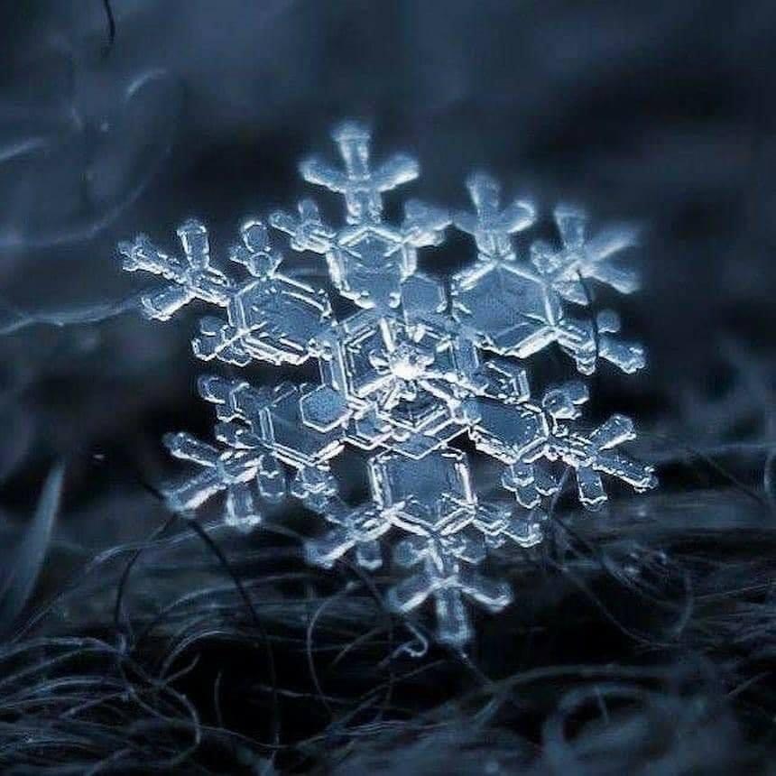 copos de nieve3