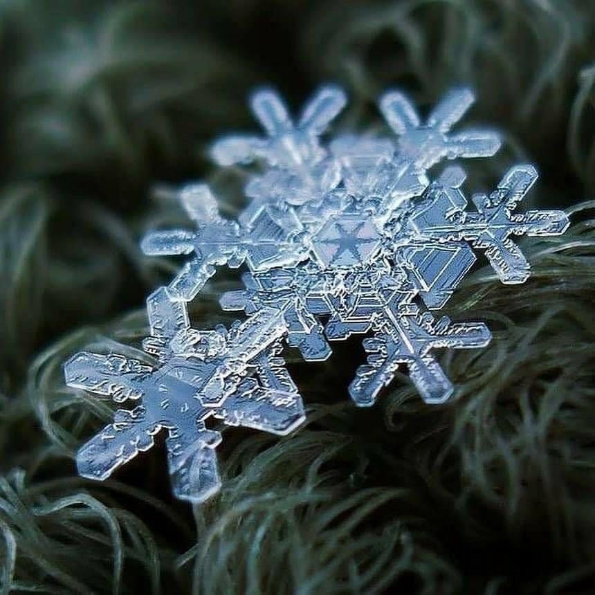copos de nieve5