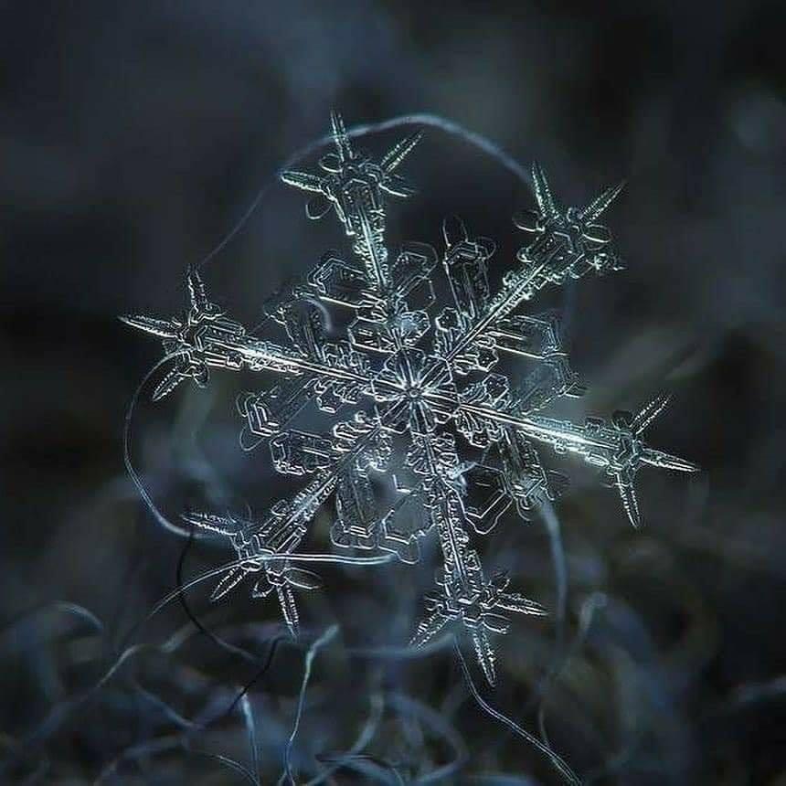 copos de nieve8