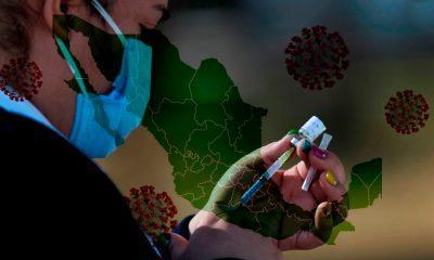 ¿Cuántas vacunas se entregaron a cada estado?